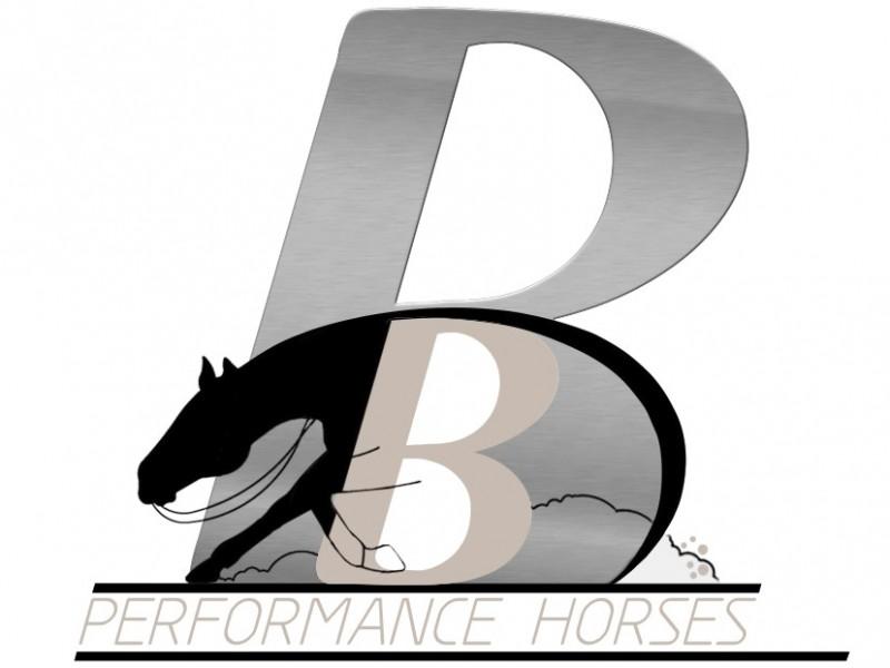 Bernd Bühler Performance Horses