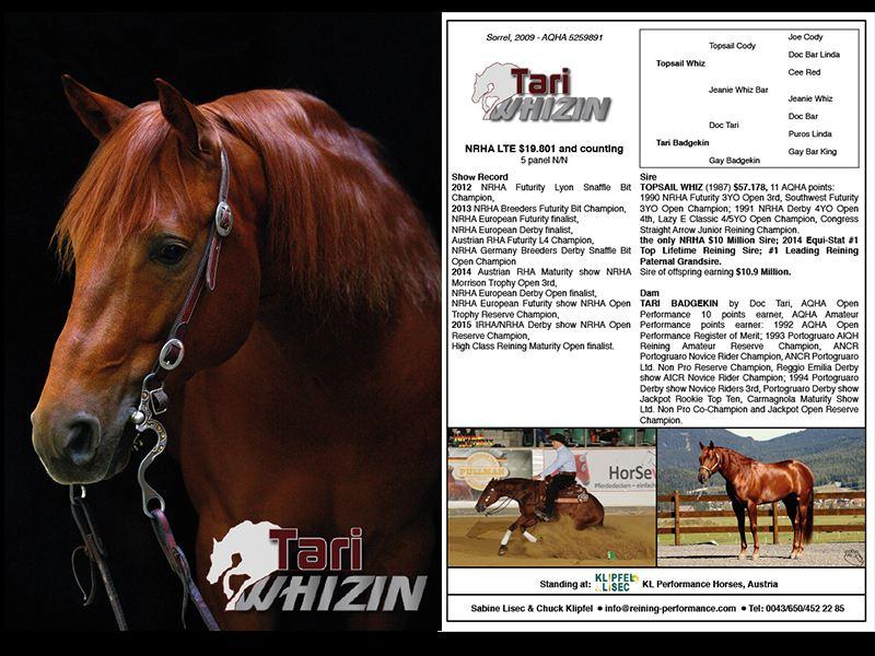 Stallioncard Tari Whizin
