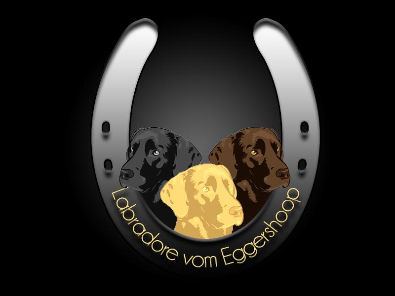 Labradore vom Eggershoop