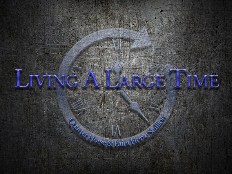 LIVING A LARGE TIME